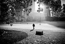 Outdoor / by Luiz Machado
