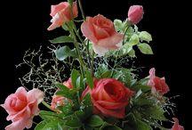 Kvety-príroda-zachrady
