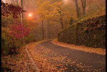 Heerlijk Herfst ll