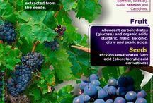 fruit, berries, grapes. nut trees etc