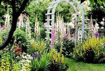 Flowers and Pretty gardens