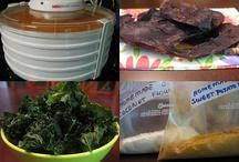 Food dehydrator ideas
