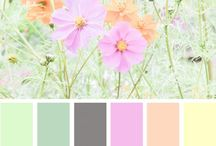 decorating color schemes