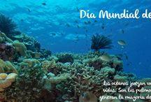 Día Mundial de los Océanos. 8 de junio. / Día Mundial de los océanos, 8 de junio, imágenes relacionadas.