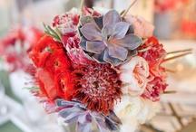 Pretty flowers & Ideas for Mum