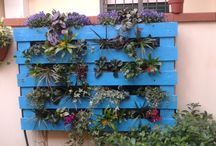 Turquoise pallet / from a piece of wood a vertical garden with autonomous irrigation plant and twelve species of plants.