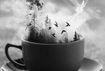 Foto: Inspirasjon, svart-kvitt