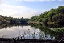 The Charlton Carper / The Charlton Carper is a comprehensive blog about my carp angling.