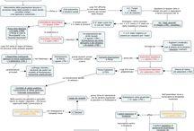 Storia / mappe concettuali, appunti, lezioni di storia facilitate