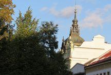 Plzeňské střechy