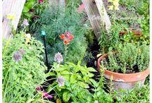 Tuin en dergelijke