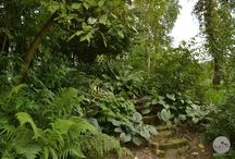 Sielski ogród W Moim Ogrodzie