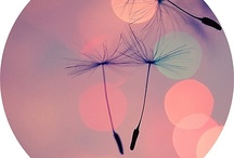 La musique / Mixes I have made on 8tracks.com. There're many kinds of music.  Just try and enjoy .)