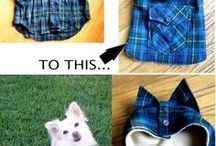 Dog sewing projects