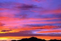 Arizona / by Dawn Pisturino
