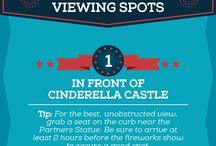 Disney World 17'