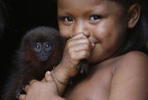trabalho sobre a Amazônia/fotos para o calendário