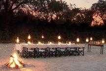 Luxury Bush Safari in Kruger Park