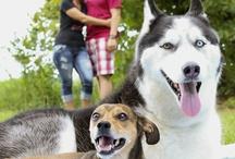 Family with Dog Photoshoot