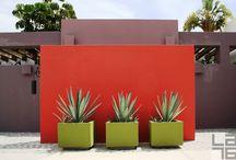 garden mexican