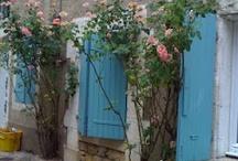 Guusje    La France