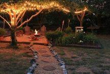 Dream Backyard / by Mona Mohammadi
