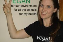 Vegans Eat Yummy Food Too / Find these recipes at http://sandysveganblogsandblahs.blogspot.com.au/