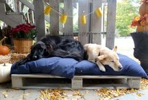 DIY Wooden Dog Beds From Euro-pallets