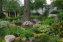 Your Garden. Your World. / Pin gorgeous gardens that you want to share here! If you would like an invitation to post your beautiful gardens, email wilson_nurseries@bellsouth.net. Be sure to adjust your settings so you do not receive an email for every post... 