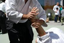 Martial Arts Tips and Facts
