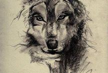farkas tetkok