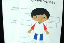 Five Senses Topic