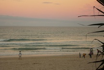 Gold Coast  / Photos of the Gold Coast Queensland - sun, surf, sand, natural beauty and fun.