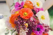 Florals / by Amelia Herbertson Art
