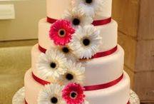 Cake / by Patti-Lynn Haughton