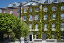 Fitzwilliam Hall / Fitzwilliam Hall is home to some of Dublin's most innovative companies from tech start-ups and pharma companies to professional service firms. Beautiful office suites located in Dublin 2.