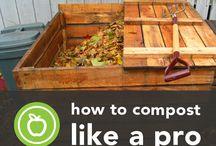 Garden, compost