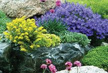 gardens - inspiration, DIY, good to know...