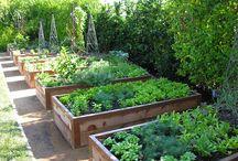 jardins com gravilha