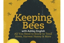 Learning to be an Apiarist