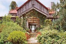 California Natives / Ideas for your California Bay Area Native garden