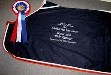Equestrian Community Involvement / Wild Brumby's publishing, community involvement and sponsorship.