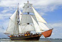 Cargo-Sailing