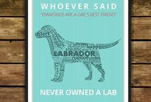 I <3 Labs / by Blanche Thomsen