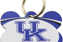 """My Wildcats! / All things Kentucky Basketball   """"I love My Cats❗️"""" / by Richard Carter"""