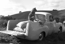 old aussie cars n things
