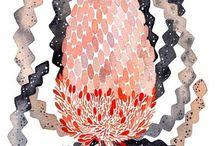 Nature Study | Banksias
