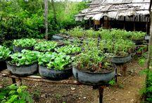 λάστιχα- κήπος