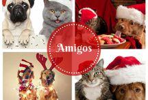 Navidad entre Amigo's / Todo lo que nos gusta en Navidad