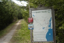 Uhthoff Trail / A nice trail outside of Orillia Ontario. http://www.ontariotrails.on.ca/trails-a-z/uhthoff-trail